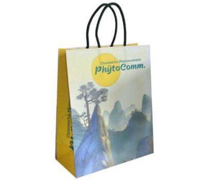 Papiertaschen mit Umschlag und eingeklebten Kordeln